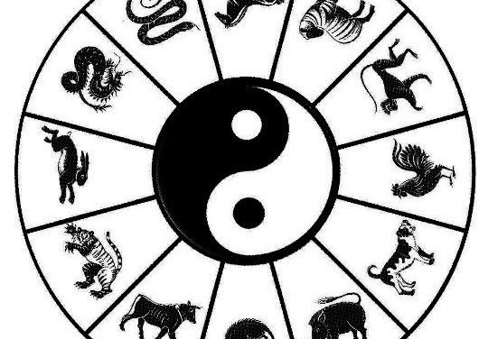 Horoscope Chinois : Cours 1